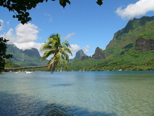 Cook Bay In Moorea