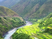 Rice Terraces Of Philippine Cordilleras