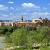 Cordoba Landscape In Spain