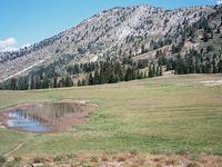 Cornucopia Peak