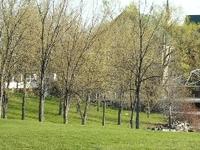 Coteau-du-Lac