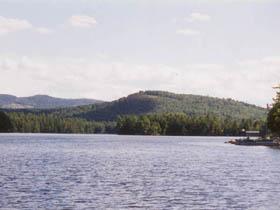 Cove Camping Area