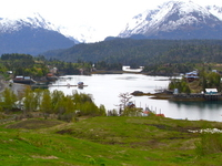 Halibut Cove