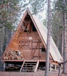Cove Patrol Cabin