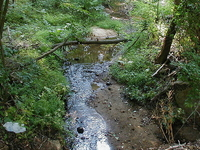 Cow Yard Brook