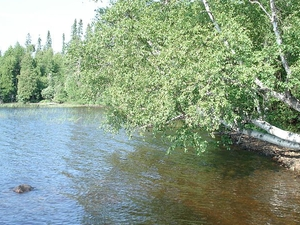 Cross River (Gunflint Lake)