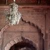 Cusped Arches Interior