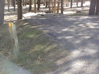 Custer Center Lake Campground