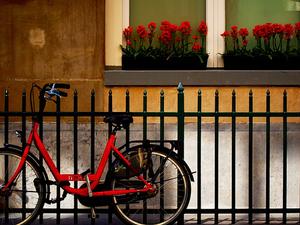Cycle Amsterdam Photos