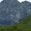 Świnica Mountain
