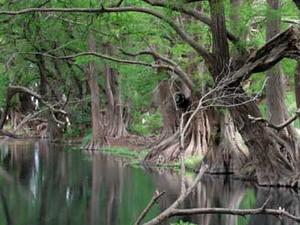 Lago de Camécuaro National Park