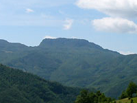Foreste Casentinesi-Monte Falterona-Campigna National Park