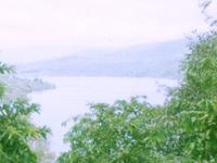Koyna Wildlife Sanctuary