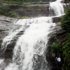 Cheeyappara Waterfalls Adimaly Kerala