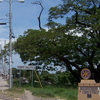 Choluteca Bridge
