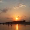 Chandrabhaga Beach Jpg9