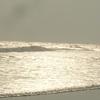Chandrabhaga Beach Jpg1