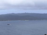 Bacalao Isla