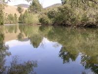 Cooplacurripa River