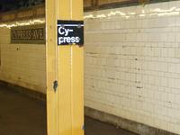 Cypress Avenue IRT Pelham Line Station