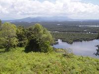 Kalimantan Región