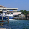 Dartmouth Waterfront Showing Pier, Ferry And Boats