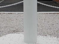 Darwin Pillar