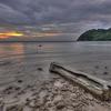 Dead Log On A Beach Sunset