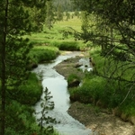 DeLacy Creek