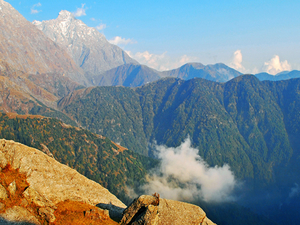 8 Days Himachal Package (Shimla + Manali) Photos