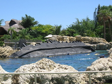 Discovery Cove Deepwater