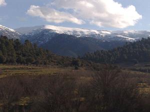 Djebel Chélia