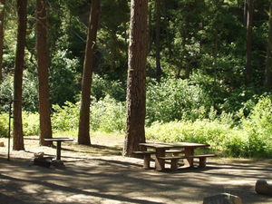 Dog Creek Campground