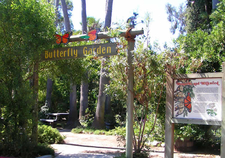 Doheny State Beach Butterfly Garden