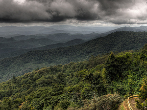 Doi Inthanon National Park Photos