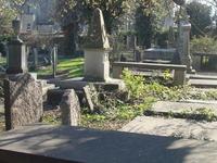 Donnybrook Cemetery