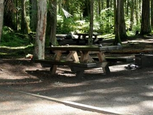 Douglas Fir Campground