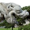 Dragon Of Zhaolin Qing