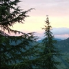 Trees - Mountains & A Sky Full Of Color