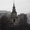 Obscured By Trees