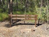 Cascade Trail