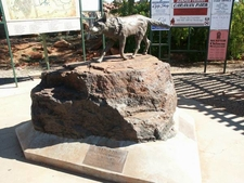 Dampier Red Dog Statue