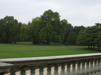 Garden At Buckingham Palace