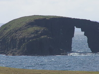 Dore Holm