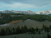The Bighorns Sacred Mountains
