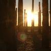 Sunrise At The Durrington Walls