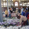 Eastern Market Detroit Flower