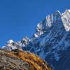 Discover Himalaya Travel