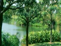 Eco-Lake