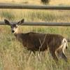 Elkhead State Park